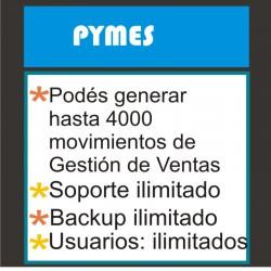 """Plan PYMES- Sistema de ventas on-line: """"Mi Negocio Sistema Control©"""""""